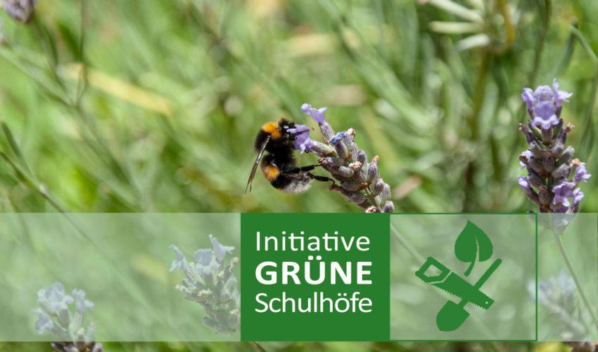 Initiative Grüne Schulhöfe